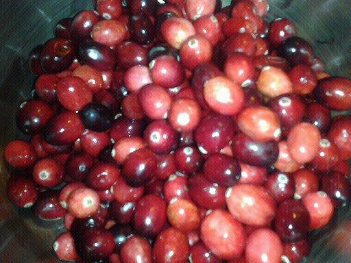cranberrypicture1