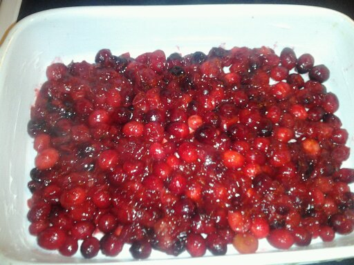 cranberrypicture2