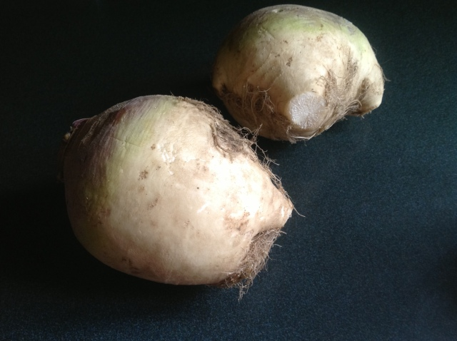 Gill feather turnips