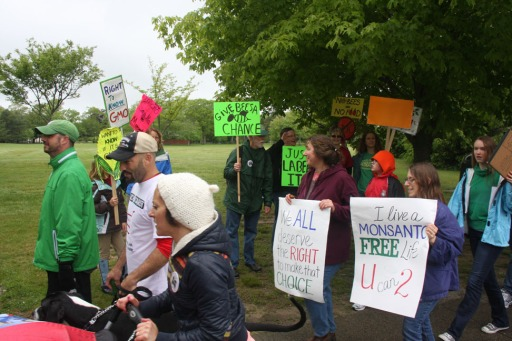 "Marchers in New Bedford's ""March Against Monsanto"" on May 25th."