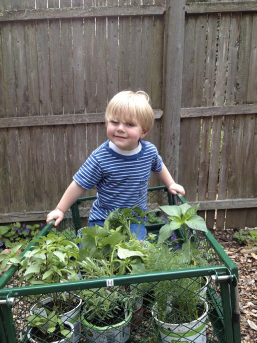 Planting Seeds 2