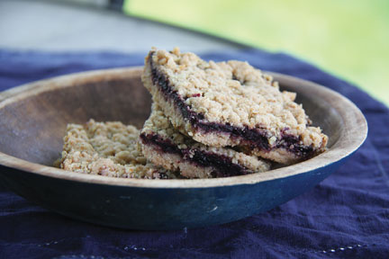 Blueberry Chutney bars