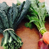 Local Food, Simple Living: Plan to Achieve Your Local Food Goals