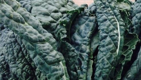 Dino Kale