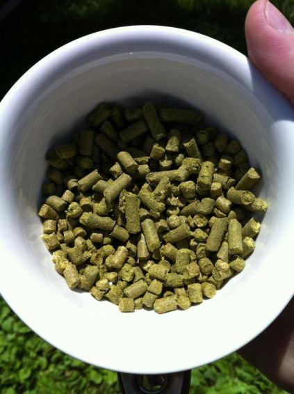 Hop pellets.