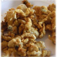 Who has your favorite...Fried Clams?