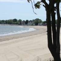 Out and About - Walkin' the Food Talk: Wollaston Beach
