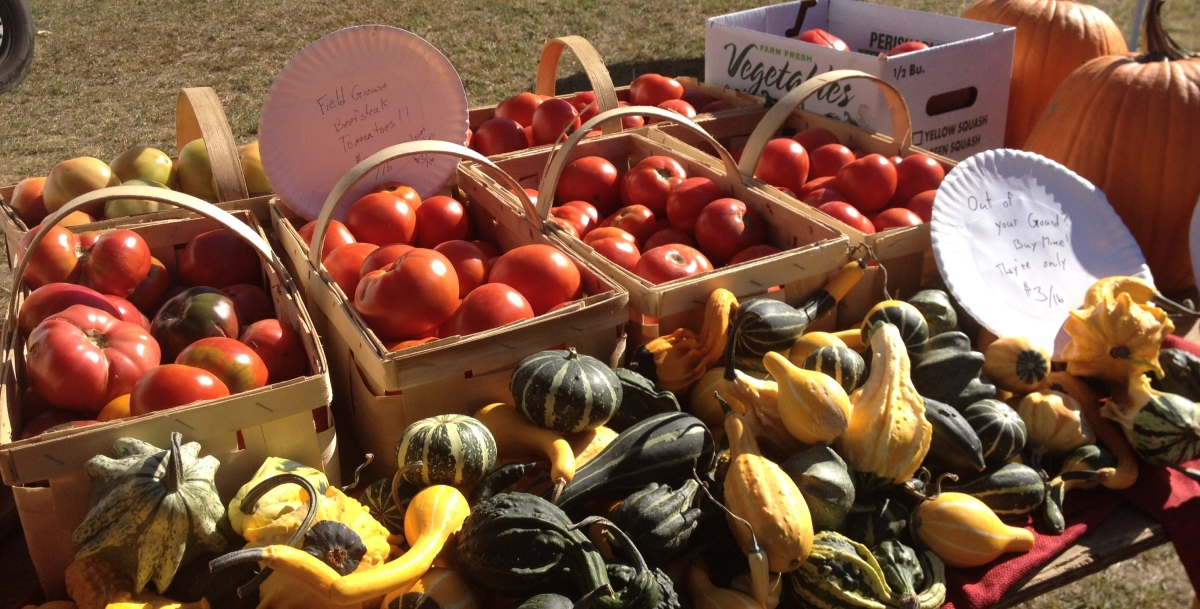 Norwell Farmers' Market Welcomes Fall, Today!