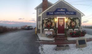 manomet lobster pound