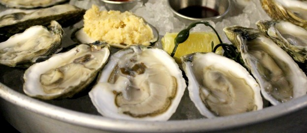 18oysters-banner-623x270