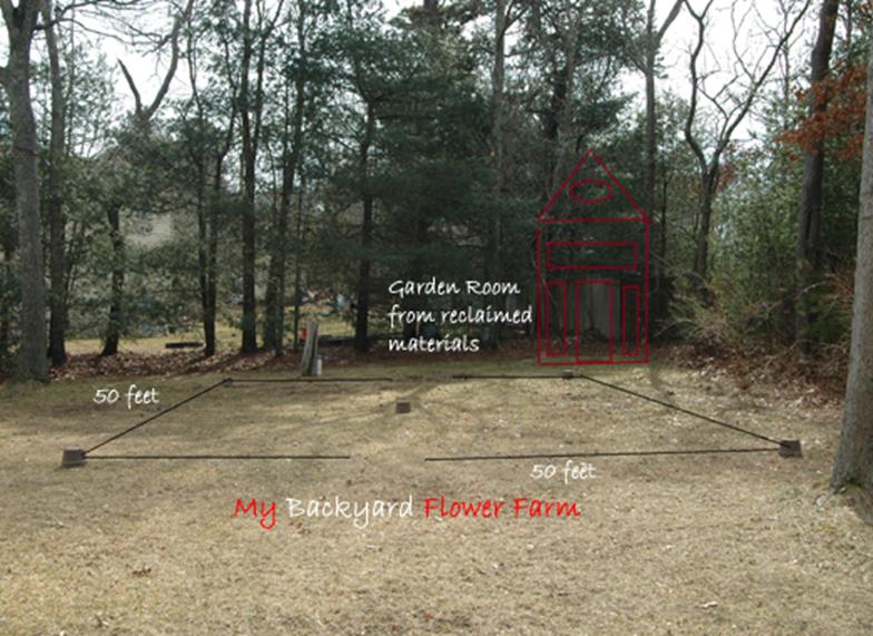 El paisaje púrpura | Yard y Jardín de Indiana - Purdue Consumer Horticulture - Purdue University