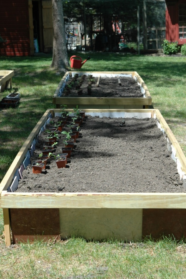 Raised beds ready for planting