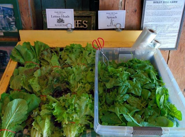Holly Hill Farm stand